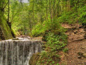 Wanderweg zur Oberwössner Feldlahnalm